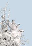 Fiori di schizzo del bagno dell'uccello di vettore Immagine Stock Libera da Diritti