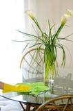 Fiori di servizio di pulizia sulla tavola Fotografia Stock