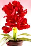 Fiori di seta rossi artificiali Fotografia Stock Libera da Diritti