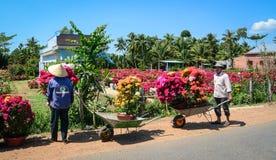 Fiori di trasporto al mercato nel Vietnam Fotografia Stock
