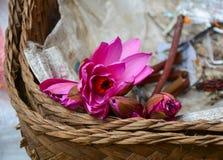 Fiori di Waterlily in canestro di bambù Fotografie Stock Libere da Diritti