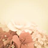Fiori dolci nello stile d'annata di colore su struttura della carta del gelso Immagini Stock Libere da Diritti
