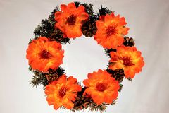 Fiori e coni di Natale di festa della corona Corona unica dell'abete di diversità di festa dei petali luminosi del fiore decorata fotografia stock libera da diritti