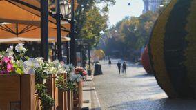 Fiori e decorazioni della via in un viale pedonale Sun-acceso Immagini Stock Libere da Diritti