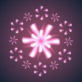 Fiori e fiocchi di neve del fuoco d'artificio. Immagine Stock