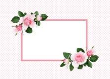 Fiori e foglie verdi della rosa di rosa in arrangemen d'angolo floreali illustrazione di stock