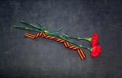 Fiori e George Ribbon del garofano Fotografie Stock Libere da Diritti