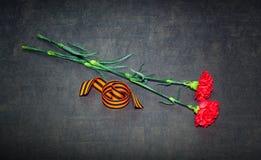 Fiori e George Ribbon del garofano Immagine Stock Libera da Diritti