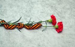 Fiori e George Ribbon del garofano su fondo leggero astratto Fotografia Stock Libera da Diritti