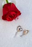 Fiori e gioielliere Fotografia Stock Libera da Diritti