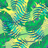 Fiori e palma tropicali A Fotografia Stock