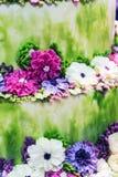 Fiori e piante da crema, caramella gommosa e molle, marmellata d'arance, marzapane Immagine Stock