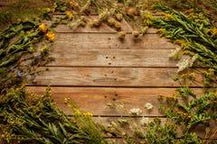Fiori e piante naturali del prato di fine dell'estate su fondo di legno d'annata Fotografie Stock