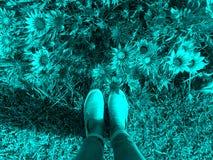 Fiori e piedi femminili nell'ambito della luce delle lampade di via Fotografia Stock Libera da Diritti