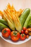 Fiori e pomodori dello zucchini fotografia stock libera da diritti