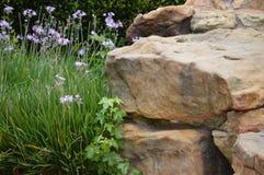 Fiori e roccia Fotografie Stock