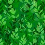 Fiori ed erba, senza cuciture Immagini Stock