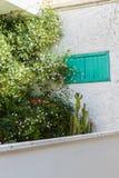Fiori ed erbe nazionali al balcone Concetto urbano dell'azienda agricola Fotografie Stock Libere da Diritti