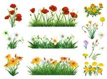 Fiori ed insieme dell'erba royalty illustrazione gratis