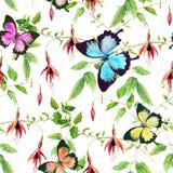 Fiori esotici e farfalle tropicali Reticolo floreale senza giunte watercolor Fotografia Stock Libera da Diritti