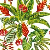 Fiori esotici e foglie della giungla senza cuciture Fotografia Stock Libera da Diritti