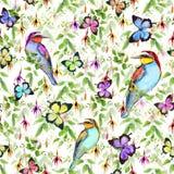 Fiori esotici, farfalle tropicali ed uccelli Reticolo floreale senza giunte watercolor Immagini Stock Libere da Diritti