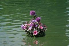 Fiori esposti su Floraart, mostra del giardino dell'internazionale 52 sul lago Bundek a Zagabria Immagini Stock Libere da Diritti