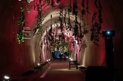 Fiori esposti su Floraart, mostra del giardino dell'internazionale 52 in tunnel Gric a Zagabria Fotografie Stock Libere da Diritti