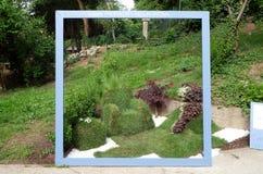 Fiori esposti su Floraart, mostra del giardino dell'internazionale 52 a Zagabria Immagine Stock Libera da Diritti