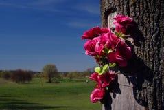 Fiori falsi sull'albero rotto Immagini Stock