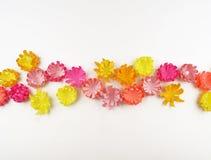 Fiori fatti di carta Il bouganvilla di carta di Flower Sorgente fotografie stock