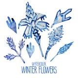 Fiori fntasy di inverno dell'acquerello Immagini Stock