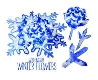 Fiori fntasy di inverno dell'acquerello Fotografia Stock