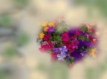 Fiori in forma di cuore su fondo floreale Immagini Stock