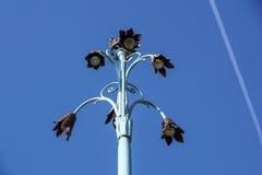Fiori a forma di della lampada di via Fotografie Stock