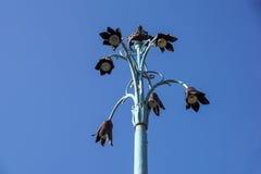 Fiori a forma di della lampada di via Immagini Stock
