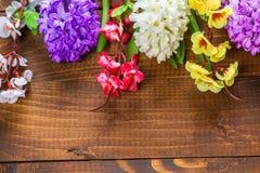Fiori freschi del giacinto Immagine Stock Libera da Diritti