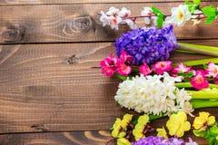 Fiori freschi del giacinto su fondo di legno Fotografie Stock Libere da Diritti