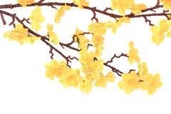 Fiori gialli artificiali. Immagini Stock Libere da Diritti