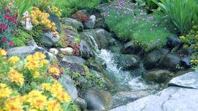 Fiori gialli del giardino nella priorità alta Nei precedenti, un fiume sulle rocce Il movimento della macchina fotografica lo per video d archivio