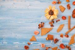 Fiori gialli di autunno e rossi asciutti su un fondo di legno blu Struttura, posto del fondo per la vista superiore del testo immagini stock