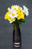 Fiori gialli e bianchi Fotografie Stock Libere da Diritti