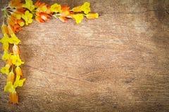 Fiori gialli formati come rasentano angolo sinistro superiore sul fondo di legno d'annata di lerciume Immagine Stock Libera da Diritti