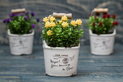 Fiori gialli, porpora e rossi artificiali in un vaso da fiori Immagine Stock