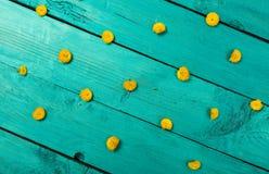 Fiori gialli su una priorità bassa blu Immagini Stock Libere da Diritti
