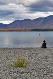 Fiori gialli sviluppati dalla riva del lago nel lago Tekapo, isola del sud della Nuova Zelanda Fotografia Stock