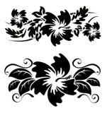 Fiori hawaiani dell'ibisco Fotografia Stock Libera da Diritti