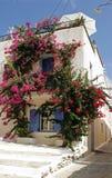 Fiori intorno alla finestra La Grecia Immagine Stock