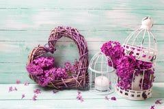 Fiori, lanterne e cuore lilla viola su turchese di legno Immagine Stock