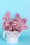 Fiori lilla Immagine Stock Libera da Diritti